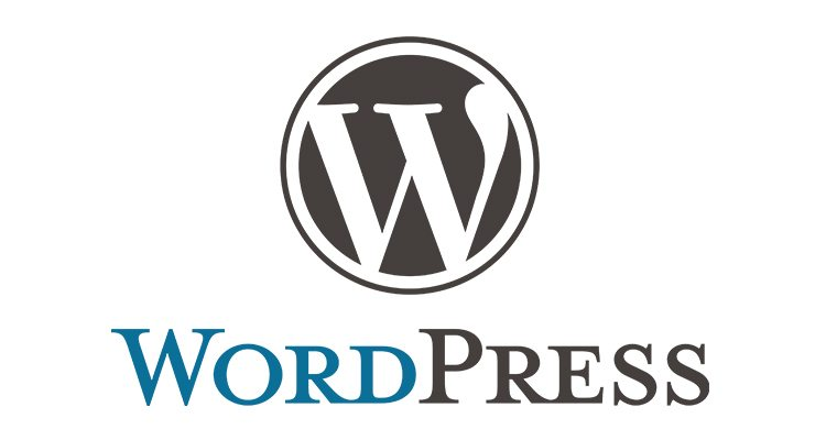 WordPress Editor: Problem gelöst!